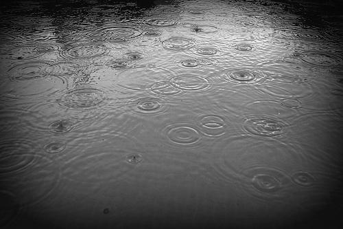 Rain by mxgirl85