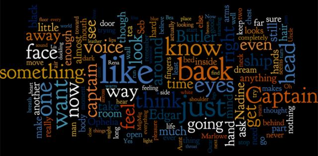 2012 NaNo Wordle